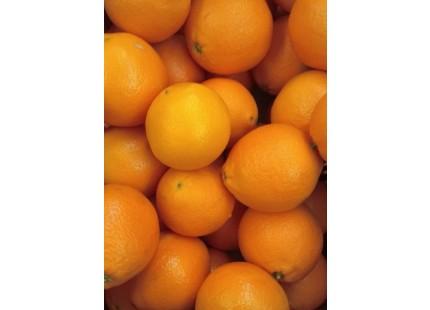Naranja Navelina para Zumo 14kg ✔
