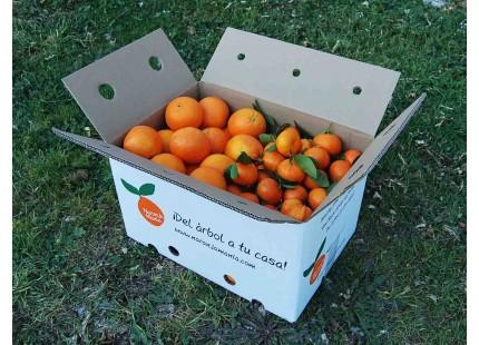 Caja Mixta 15 kg:  Naranja Navel Lane-Late zumo +  Mandarina Clemenvilla