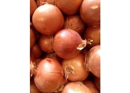 Cebollas 1kg