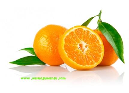 Mandarina Clemenvilla Valenciana 14kg ✔