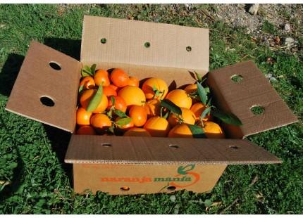 Caja Mixta 15 kg:  Naranja Navel Lane-Late zumo +  Mandarina Tardia