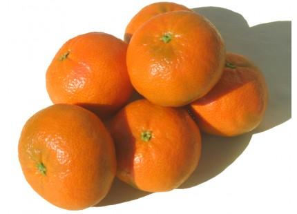 Mandarina Tardia 5kg