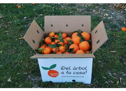 Caja Mixta 9 kg:  Naranja Navel Lane-Late mesa +  Mandarina tardía ✔