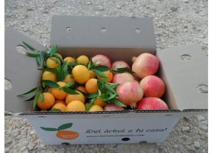 Caja Mixta 9kg Mandarina y Granada Mollar