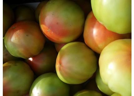 Tomate Tradicional Valenciano 15kg