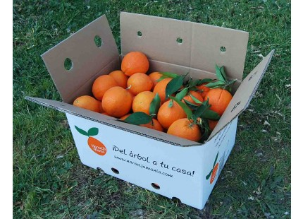 Naranja Navelina mesa + Navelina Zumo 14kg