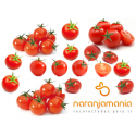 Tomate Cherry Eco 0,5kg ✔
