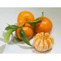 Mandarina Tardia 19kg