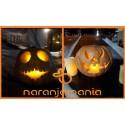 Comprar Calabaza Halloween (1,5kg a 2,5kg aproximados)