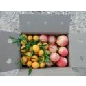 Caja Mixta 14kg Mandarina y Granada Mollar