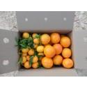 Caja Mixta 9kg Mandarina y Caqui Persimon