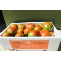 Caja Mixta 19kg de Naranja Zumo (14kg) + Tomate Valenciano (5kg)