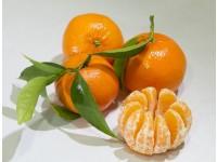 Mandarina Tardia 9kg ✔