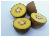Kiwi Amarillo 1kg ✔