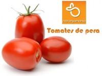 Tomate de Pera 1kg ✔