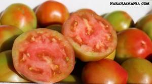 Tomate online Naranjamania